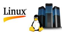 Hướng dẫn cài phpmyadmin trên hosting